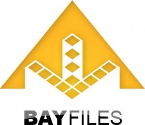 Bayfiles: almacenamiento de archivos de forma legal