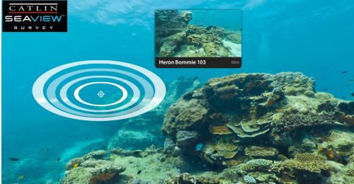 SeaView, la versión submarina de Google StreetView