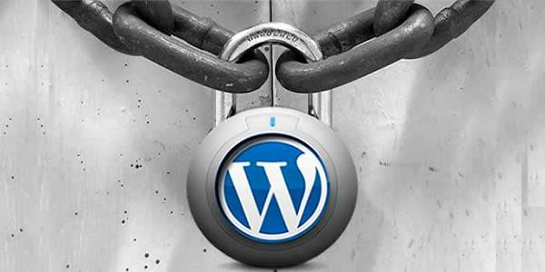 74 versiones de WordPress tienen problemas de seguridad