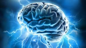 Aumentan los juegos para entrenar el cerebro