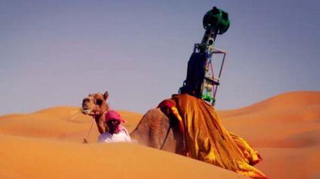 ¿Quieres recorrer el desierto en África encima de un camello?